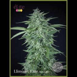 LLIMONET HAZE (3) AUTO CBD