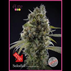 SOLODIOL (3) CBD