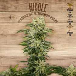 NICOLE (10)