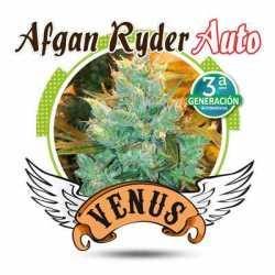 AFGAN RYDER AUTO (5)