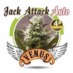 JACK ATTACK AUTO (100)