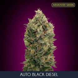 AUTO BLACK DIESEL (3)