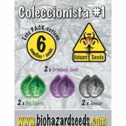 COLECCIONISTA N1 (6)