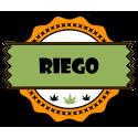 Riego
