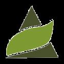 Pyramid Seeds Auto