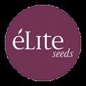 Élite Seeds CBD