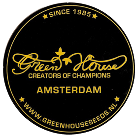 Green House Seeds Auto | www.merkagrow.com