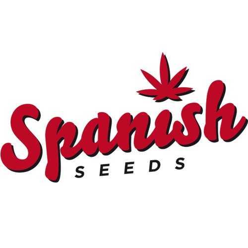 Spanish Seeds Auto | www.merkagrow.com