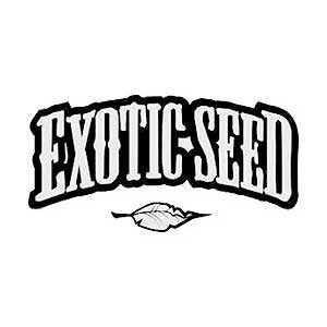 EXOTIC SEED | www.merkagrow.com