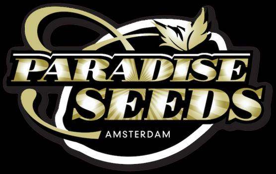 PARADISE SEEDS CBD | www.merkagrow.com